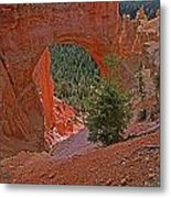 Bryce Canyon Natural Bridge And Tree Metal Print