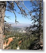 Bryce Canyon Overlook With Dead Trees Metal Print