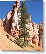 Bryce Canyon Red Fins Metal Print