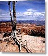 Bryce Canyon State Park Metal Print
