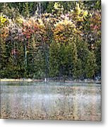 Bubble Pond Acadia National Park Metal Print