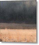 Buck Whitetail Deer Crossing Field Metal Print