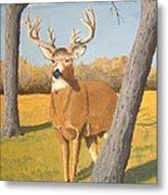 Bucky The Deer Metal Print