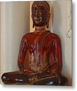 Buddha In Savannah Metal Print
