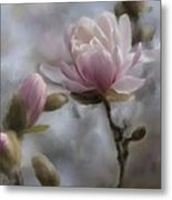 Budding Magnolia Branch Metal Print