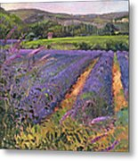 Buddleia And Lavender Field Montclus Metal Print