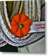 Buddy Poppy Metal Print