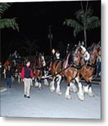 Budwiser Clidsdale Horses Metal Print