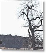 Buffalo Breath In The Winter Air Metal Print