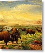 Buffalo Fox Great Plains Western Landscape Oil Painting - Bison - Americana - Historic - Walt Curlee Metal Print
