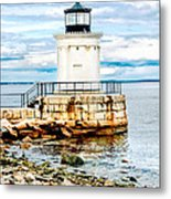 Bug Light Study Metal Print
