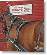 Buggy Attached Metal Print