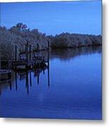 Bull Frog Creek II Gibsonton Fl Usa Near Infrared Metal Print