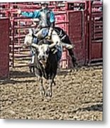Bull In The Air Metal Print