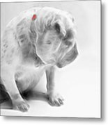 Bulldog 3 -  Featured In Comfortable Art Group Metal Print