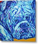 Bulldog Blues Metal Print