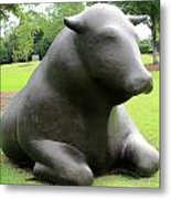 Bulls 5 Metal Print by Randall Weidner