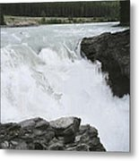 Bulls Horses Rock And Water Metal Print