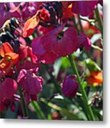 Bumble Bee Among The Wallflowers IIi Metal Print