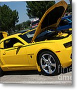 Bumble Bee Side View 7904 Metal Print