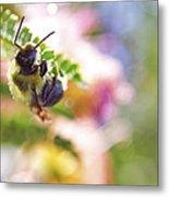 Bumblebee Disco Metal Print