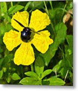 Bumblebee On Flower Metal Print