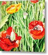 Bunch Of Poppies IIi Metal Print