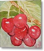 Bunch Of Red Cherries Metal Print
