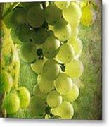 Bunch Of Yellow Grapes Metal Print