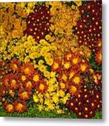Bunches Of Yellow Copper Orange Red Maroon - Hot Autumn Abundance Metal Print