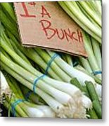 Bunches Of Onions Metal Print