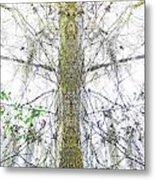 Burden Center Spirit Tree Metal Print