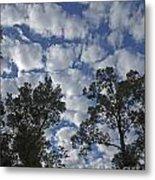 Burden Sky Metal Print
