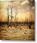 Burned Out Forest Metal Print