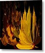 Burning Fall Metal Print