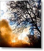 Burning Olive Tree Cuttings Metal Print