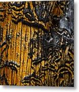 Burnt Beetle Maze  #9991 Metal Print