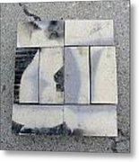 Burnt Brick 1 Metal Print