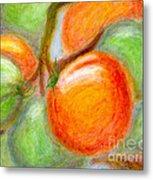 Burpee Tomatoes Metal Print