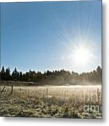 Burst Of Sunshine Metal Print