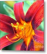 Burst Yellow Metal Print