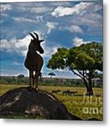 Bushbuck Guard Of The Mound   Metal Print