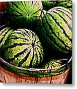 Bushel Full Of Melons Metal Print