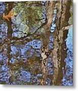 Reflection In Bushkill Falls  Metal Print