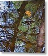 Second  Reflection In Bushkill Falls  Metal Print