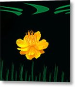 Buttercup Delight Metal Print