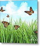 Butterflies In Tall Wet Grass  Metal Print