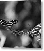 Butterflies On A Wire Metal Print