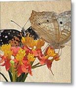 Butterflies Snd Flowers Metal Print