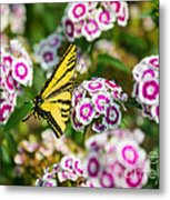 Butterfly And Blooms - Spring Flowers And Tiger Swallowtail Butterfly. Metal Print